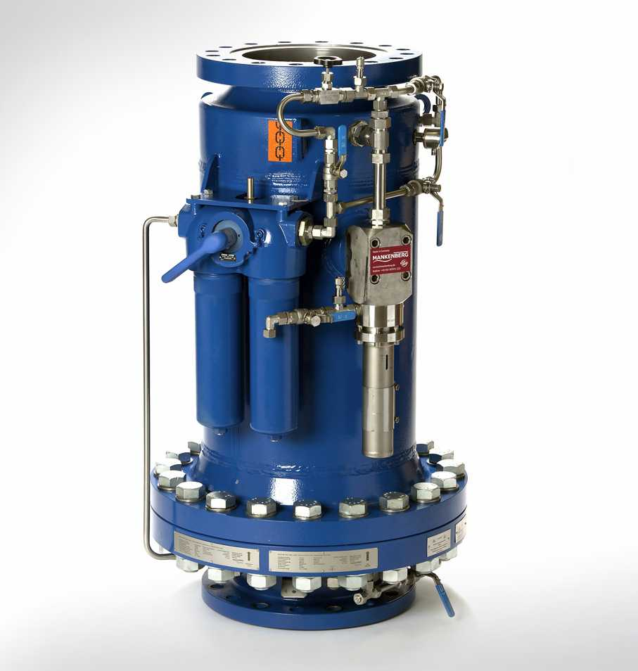 Surge Relief Valve (Peak Load)